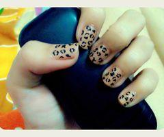 thumb (4)